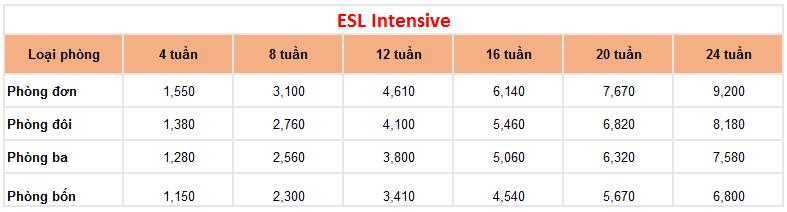 bang-gia-truong-lslc-2019-esl-itensive