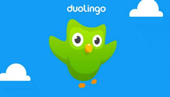 học tiếng Anh cấp tốc cho người đi làm cùng duolingo