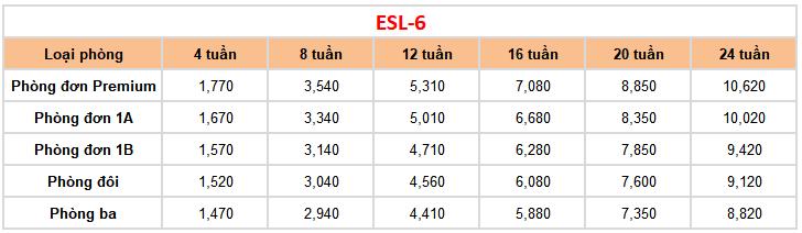 Khóa học ESL 6 tại trường Anh ngữ Fella 1