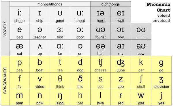 bảng phát âm tiếng Anh quốc tế IPA là gì