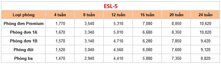 học phí ESL 5 tại trường Anh ngữ FELLA 2