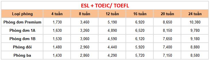 học phí khóa kết hợp tại trường Anh ngữ FELLA 2