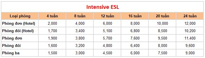 học phí trường Anh ngữ CIA khóa Intensive ESL