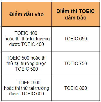 toeic-truong-anh-ngu-pines