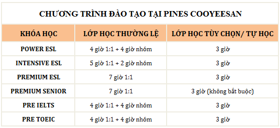 chuong trinh dao tao pines cooyeesan