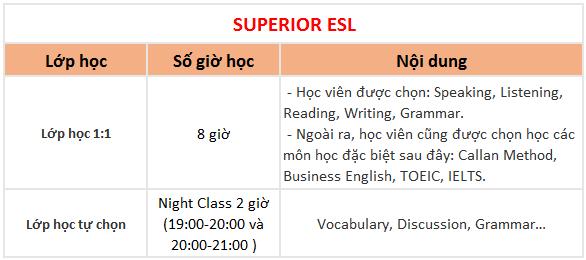 khóa superior trường Anh ngữ QQ English