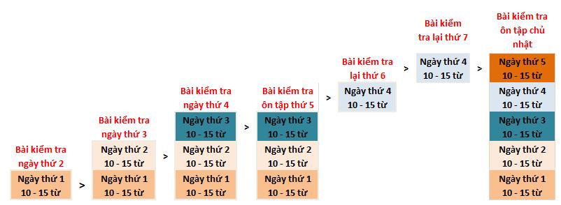 hệ thống bài kiểm tra của trường Anh ngữ C2 UBEC