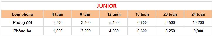 học phí khóa Junior tại trường Anh ngữ FELLA 1