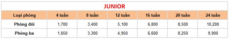 học phí khóa Junior tại trường Anh ngữ FELLA 2