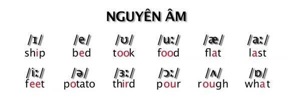 bảng phát âm tiếng Anh bao gồm bao nhiêu nguyên âm