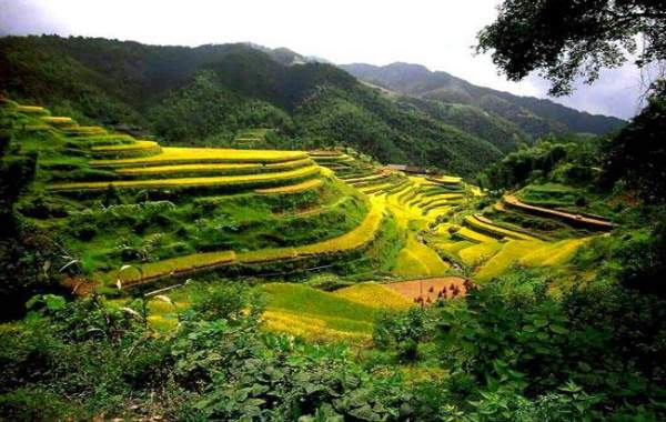 du-lich-baguio-philippines-ruong